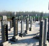 张钦礼逝世十周年 数万群众自发悼念